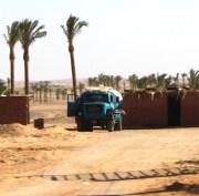 egypte (113)