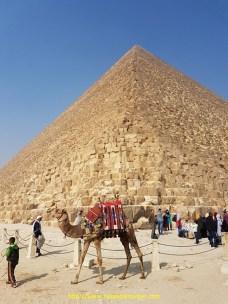 Egypte (9)