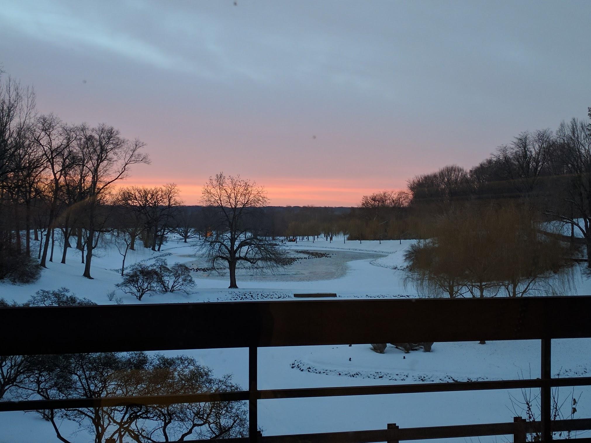 sunrise work