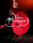 Dosier ¡Viva Flamenco!