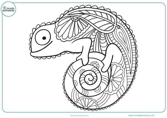 Imagenes de mandalas para niños con animales