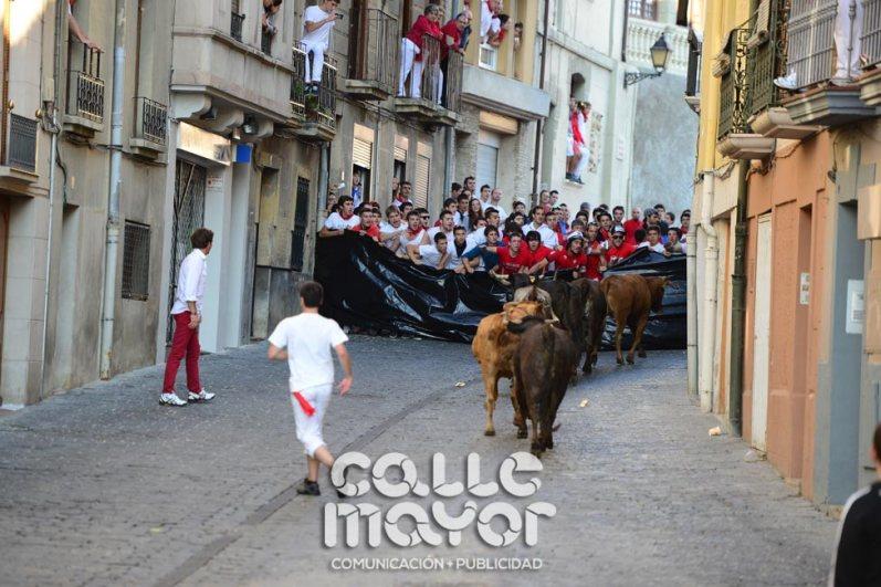 14-08-06-fiestas-de-estella-calle-mayor-comunicacion-y-publicidad-061