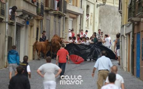 15-08-05-fiestas-de-estella-calle-mayor-comunicacion-y-publicidad- (77)