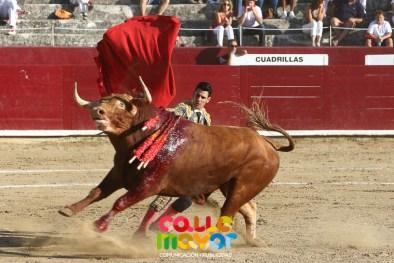 2017-08-06-FIESTAS-DE-ESTELLAS-CALLE-MAYOR-COMUNICACION-Y-PUBLICIDAD--22 (2)