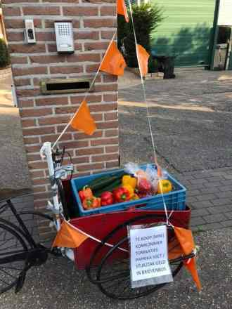 Even bij Ad de Groot, Lange Broekweg 31 in Naaldwijk langs voor wat kromme komkommer, paprika's en misvormde snoeptomaatjes en komkommertjes. Voor de bedankt-tas voor Karin Zwinkels CDA