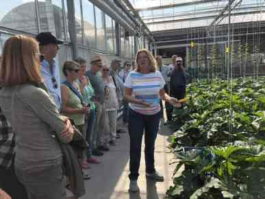 Ewa Van Vliet- Fludra van Courgettekwekerij van Vliet vertelt ons alles over de courgetteplant, teelt en mannelijke en vrouwelijke bloemen