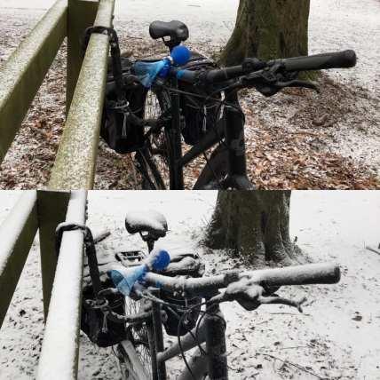 Voor en na m'n hardlooprondje in Het Staelduinse Bos — bij Het Staelduinse Bos.