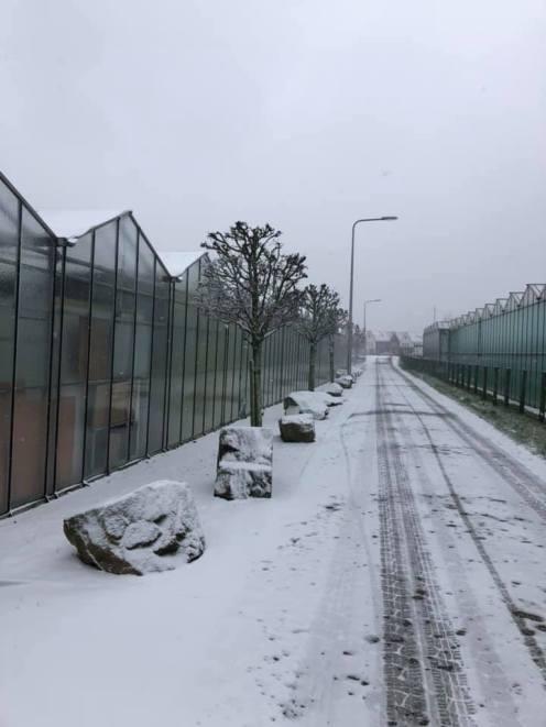 Nog een mooi Westlands sneeuwplaatje onderweg