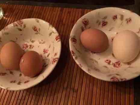 Ontbeitje: - dubbeldooier eieren van Boer Pait Peter Hoogendonk van Boerderij Hoogendonk - eieren van Eierhandel Van Vliet, De Jonghlaan 19, 's-Gravenzande — bij Fietsen voor m'n eten.