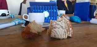 Roggebrood zoals we dat nog niet kennen, bij Het Blauwe Hek — bij Het Blauwe Hek.