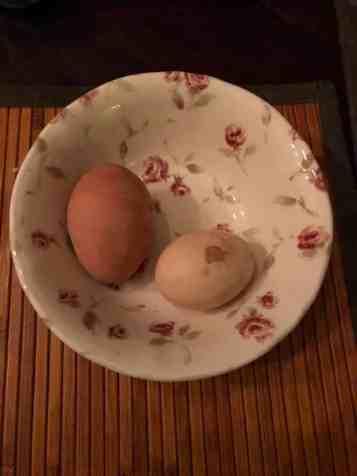 Groot-ei-klein-ei: - dubbeldooier ei van Boerderij Hoogendonk - eitje van Hilde Jansen — bij Fietsen voor m'n eten.