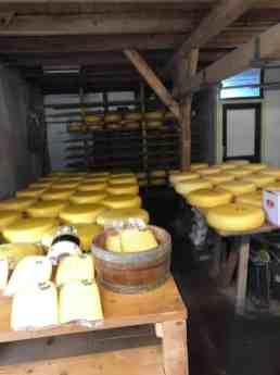 De kazen lagen heerlijk te rijpen bij Kaasboerderij en Melkveehouderij van Eijk — bij Kaasboerderij en Melkveehouderij van Eijk.