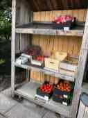 Wie betaalt is lief, dus netjes betaald voor die grote en kleine tomaten op Oudecampsweg 25, De Lier