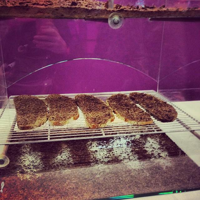 Le Salon du Chocolat, temple de la gourmandise   943732 596398747075188 993035055 n