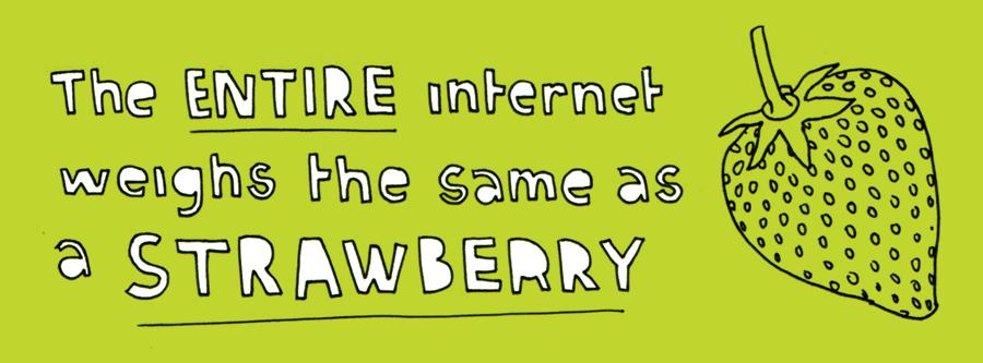 fifteen - web 25 - strawberry