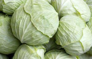 Read more about the article Η δίαιτα της λαχανόσουπας για γρήγορο αδυνάτισμα σε επτά ημέρες