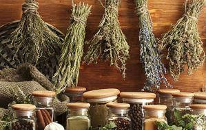 Γνώρισε τα βότανα και τα αιθέρια έλαια που θα ανεβάσουν την ερωτική σου διάθεση