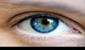 Θα δείτε το… φως: Ποιο ελληνικό μπαχάρι θωρακίζει τα μάτια απο 90 παθήσεις!
