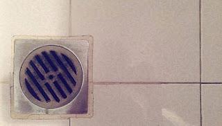 Read more about the article Το εγγυημένο κόλπο που θα ξεβουλώσει τα σιφόνια του μπάνιου από τις τρίχες