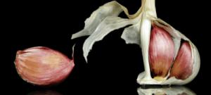 Read more about the article Πώς το σκόρδο, ο πιο βρωμερός καρπός εξοντώνει όλες τις αρρώστειες και είναι υπερτροφή δύναμης  Πηγή: Πώς το σκόρδο, ο πιο βρωμερός καρπός εξοντώνει όλες τις αρρώστειες και είναι υπερτροφή δύναμης |