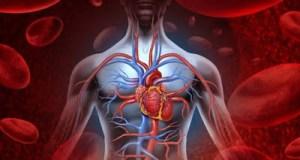 10 λόγοι αυξημένης χοληστερόλης στο αίμα