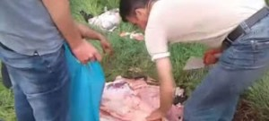 Από κρεοπώλη είχαν αγοράσει το κρέας οι μετανάστες στη Λέσβο