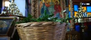 Κυριακή των Βαΐων: Δείτε γιατί πρέπει να βάλετε ένα φύλλο στο πορτοφόλι σας