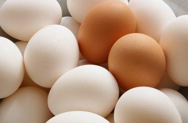 Read more about the article Πως να αναγνωρίσετε τα 4 είδη αυγών και τη χώρα προέλευσής τους