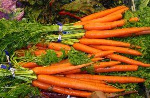 Οι θεραπευτικές ιδιότητες του καρότου!
