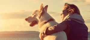 Ο σκύλος «σώζει» και από καρδιακά!