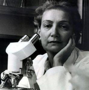 Αμαλία Κουτσούρη γεννήθηκε στην Κωνσταντινούπολη τον Ιούνιο του 1912. Ο πατέρας της, Χαρίλαος Κουτσούρης, ήταν γνωστός δερματολόγος και είχε δική του κλινική στην Πόλη.