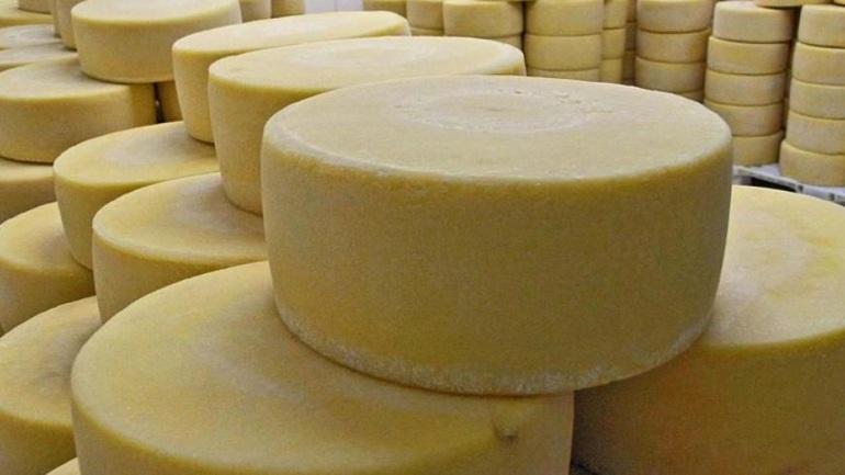 Πειραιάς: Κατασχέθηκαν 345 κιλά τυριά σε επιχείρηση