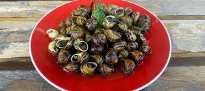Παραδοσιακή κρητική συνταγή: Χοχλιοί μπουρμπουριστοί
