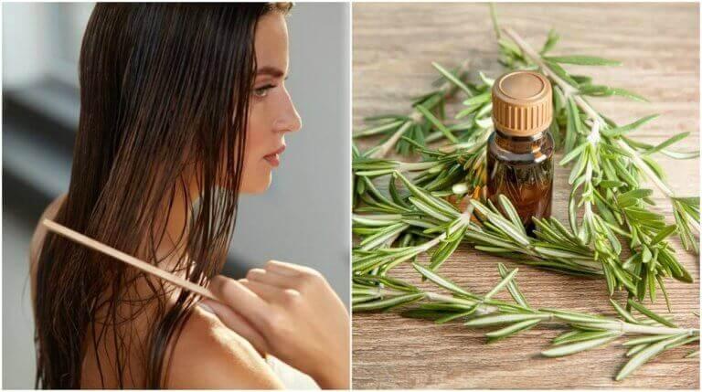 5 πλεονεκτήματα που χαρίζει το δεντρολίβανο στα μαλλιά σας