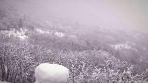 Καιρός: Πυκνή χιονόπτωση στον Παρνασσό – Πάνω από 20 εκατοστά το χιόνι