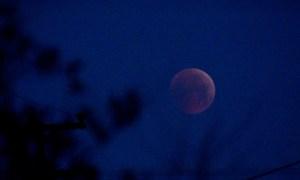 «Σούπερ χιονισμένη σελήνη»: Γιατί αποκαλείται έτσι η υπερπανσέληνος Φεβρουαρίου;(video)