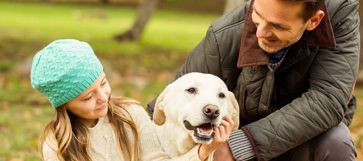 Read more about the article Πέντε τρόποι να πείτε στον σκύλο σας «Σ'αγαπώ» στη γλώσσα του