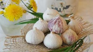 Σκόρδο, ένα φυσικό φάρμακο