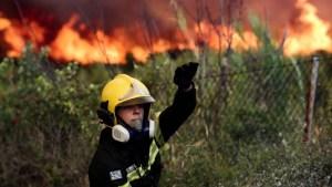 Ανεξέλεγκτη η φωτιά στη Θήβα – Οι φλόγες επεκτείνονται στην Αττική