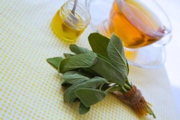 Φασκόμηλο και μέλι για τις γρατσουνιές και τα κοψίματα