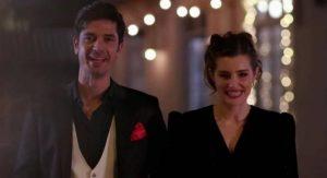 ΑΓΡΙΕΣ ΜΕΛΙΣΣΕΣ – Spoiler: Ελένη και Λάμπρος επιτέλους παντρεύονται!