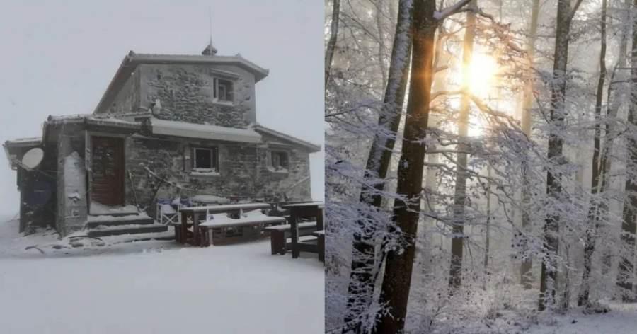 Ντύθηκε «στα λευκά» ο Όλυμπος: Χιονίζει από τα ξημερώματα