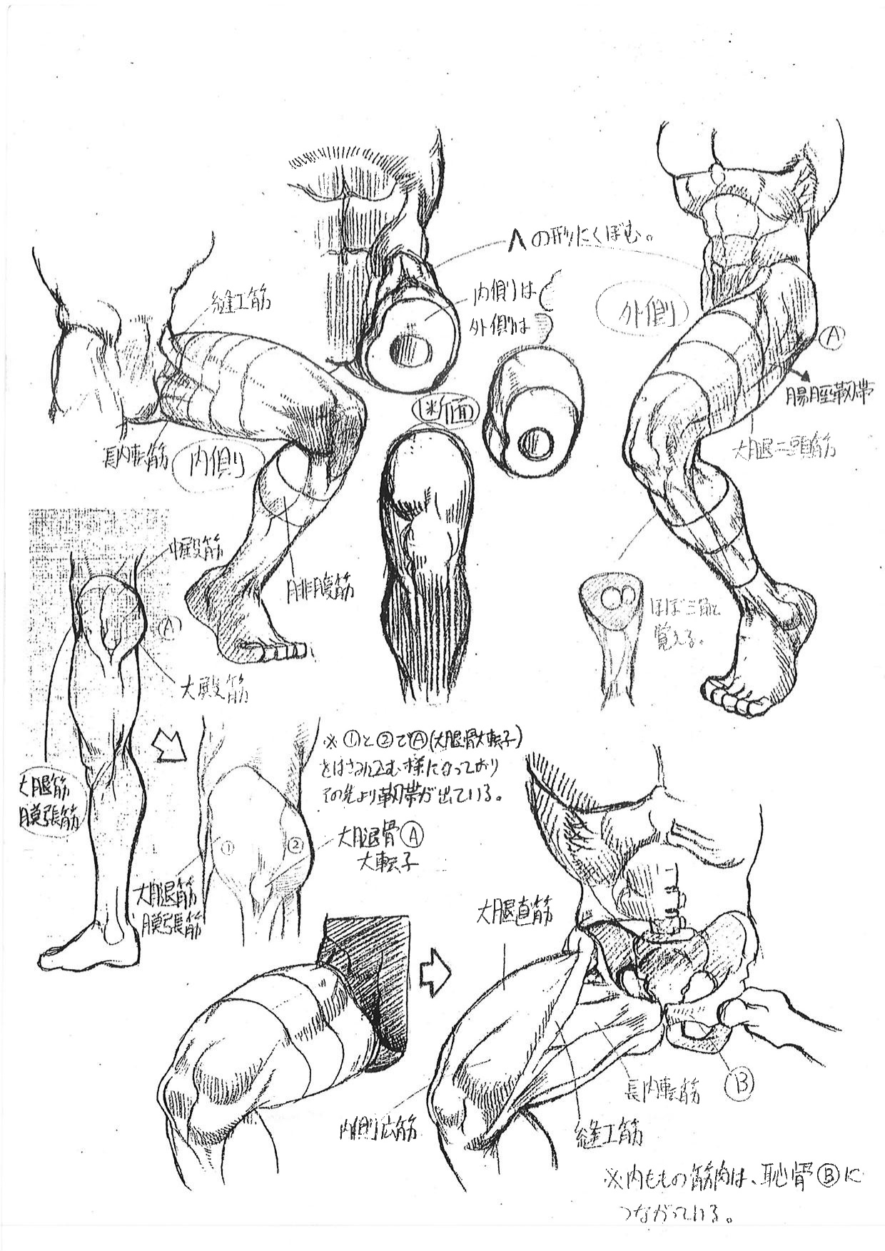 Capcom's Street Fighter Anatomy Guide