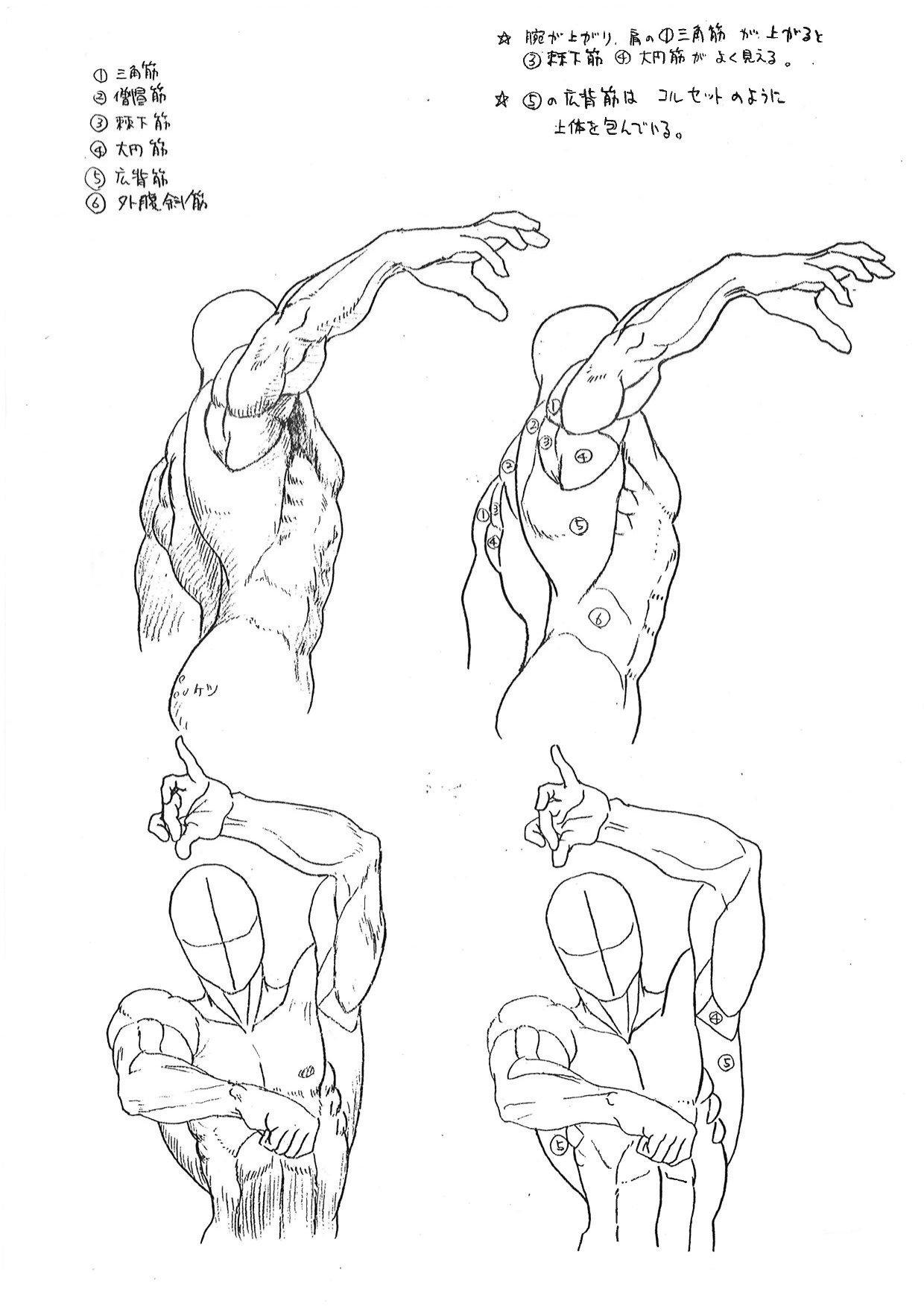 Capcom's Street Fighter Anatomy Guide