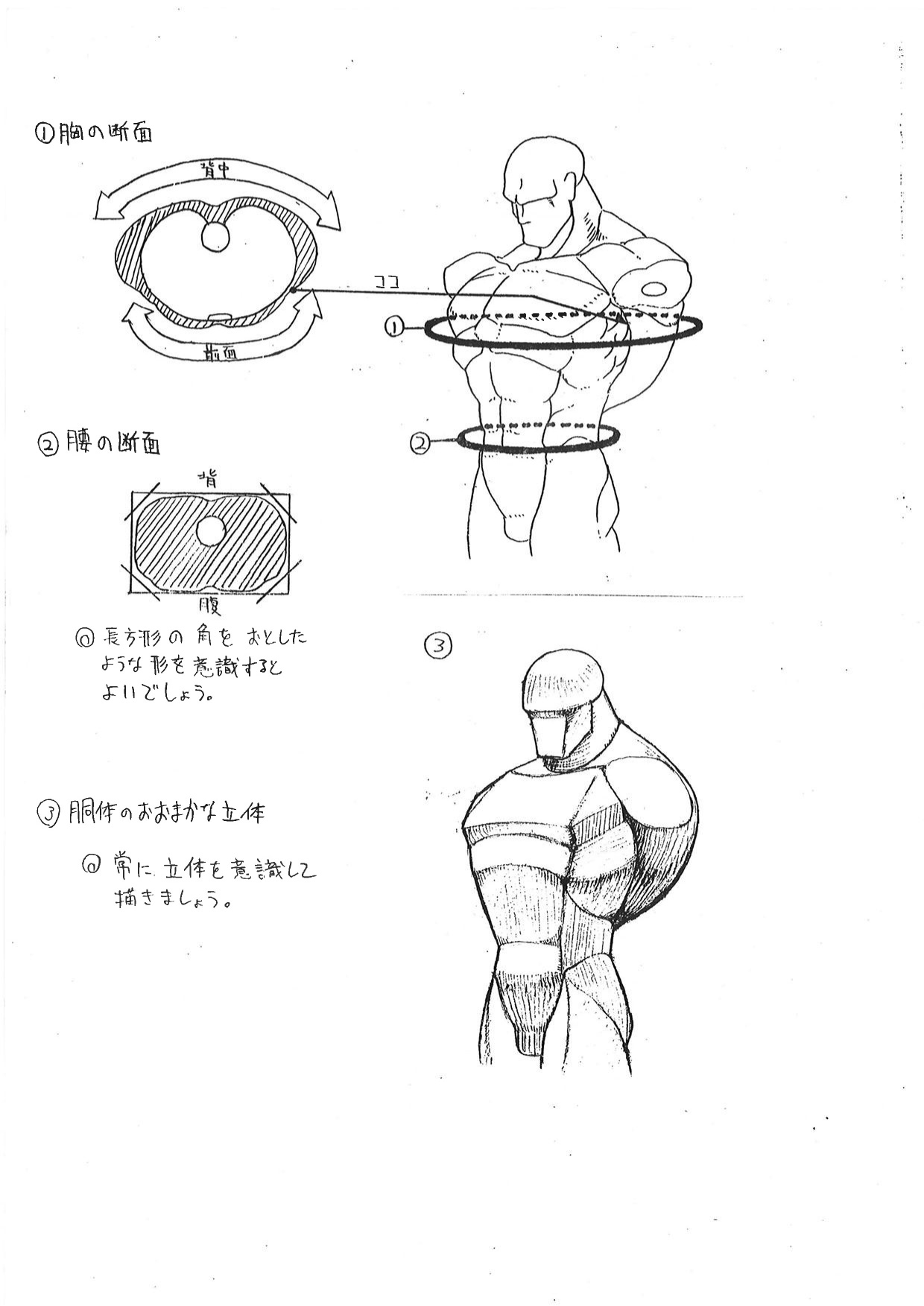 Capcom Releases anatomy Guide Used by Street Fighter
