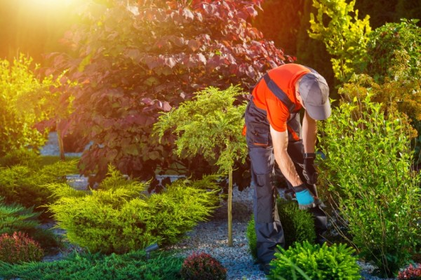workers' comp benefits landscaping