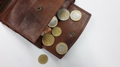 Wallet with euro coins