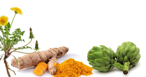 detoxify body to shrink fibroids, herbs to shrink fibroids, diet to shrink fibroids, diet to shrink fibroids naturally, foods that shrink fibroids, foods to avoid with fibroids, foods to reduce fibroid growth, prevent fibroid growing, how to reduce fibroids without surgery, foods to avoid with fibroids, how to reduce fibroids in uterus, foods that fight fibroids