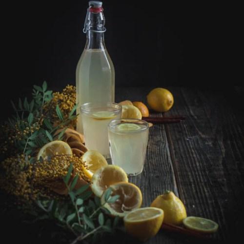 Winter spiced lemonade