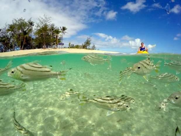 Cheap+Island+Vacations